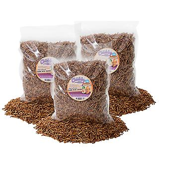 3kg dried chubby mixes (mealworms & calci worms)