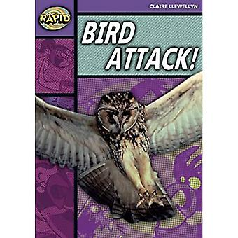 Rapid Stage 1 Level B: Bird Attack! (Series 2): Series 2 Stage 1 Lev (RAPID SERIES 2)