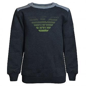 EA7 Boys EA7 Boy's Grey Sweatshirt