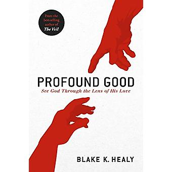 Profound Good by Blake K Healy - 9781629995656 Book