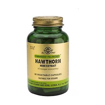 Hawthorn Herb Extract 60 capsules