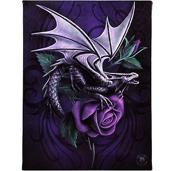 Anne Stokes Dragon Beauty Canvas