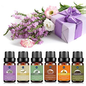 Pure Essential Oils Diffuser Massage Ginger Rose, Peppermint, Lemon, Rosemary,