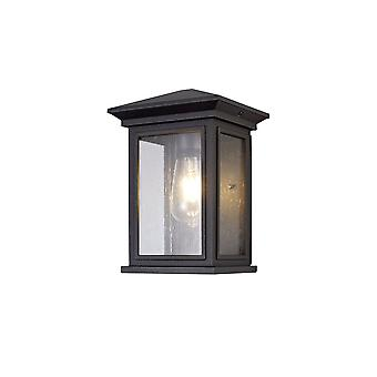 Luminosa Lighting - Flush Wall Lamp, 1 x E27, IP54, Antraciet, Clear Seeded Glass
