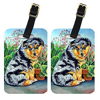 Carolines Treasures  7045BT Pair of 2 Australian Shepherd Puppy Luggage Tags