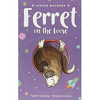 Ferret on the Loose (Little Rockets)