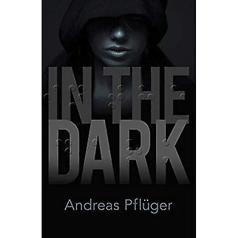 In het donker: een Jenny Aaron Thriller