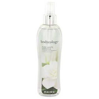 Bodycology Pure White Gardenia By Bodycology Fragrance Mist Spray 8 Oz (women) V728-530531