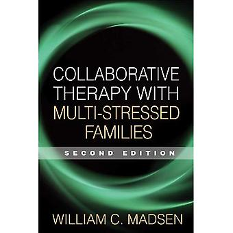 Collaborative Therapy with Multi-Stressed Families (Guilford Family Therapy) (Guilford Family Therapy)