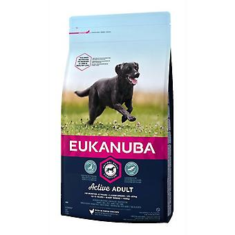 Eukanuba Maintenance Large Breed Adult Chicken (Dogs , Dog Food , Dry Food)