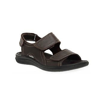 Enval soft coffee lark shoes