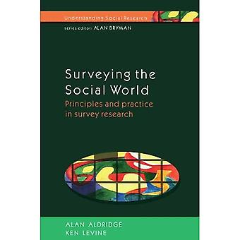 Surveying The Social World: Principles and Practice in Survey Research (Understanding Social Research)