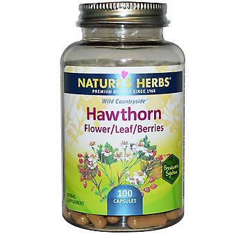 Nature's Herbs, Hawthorn, Flower/Leaf/Berries, 100 Capsules