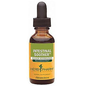 Herb Pharm Intestinal Soother, 4 oz