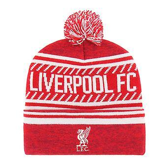 47 Brand Beanie Winter Hat - THE ICE Liverpool