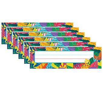 Una placa de nombre mundial, 36 por paquete, 6 paquetes