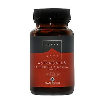 Astragalus, Sauco and Garlic Complex (Resistance Support) 100 capsules