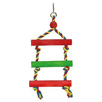 Arquivet escalier couleur (oiseaux, oiseaux Cage accessoires, perchoirs & messages)