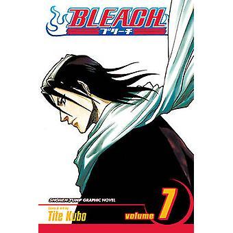 Bleach v 7 The Broken Coda