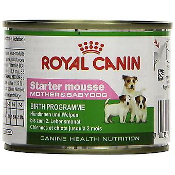 Royal Canin Dog Puppy food Starter Mousse 195 GR, 12 cans
