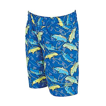 Zoggs Junior guttens svømming Shorts blå/grønn for 1-6 år barn