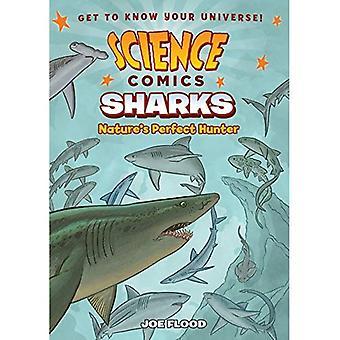 Science Comics: Sharks (Science Comics)