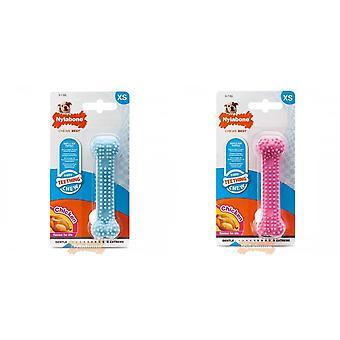 Nylabone Puppy Teething Chew Textured Bone Chicken Flavour Toy