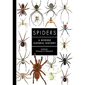 Spiders of the World - A Natural History by Norman Platnick - 97817824