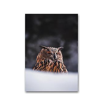 Søt eurasisk eagle-ugle plakat -bilde av Shutterstock