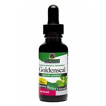 Nature's Answer Goldenseal Root, ORGANIC, 1 OZ
