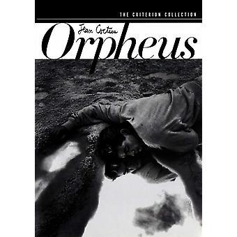 Orpheus film plakat (11 x 17)