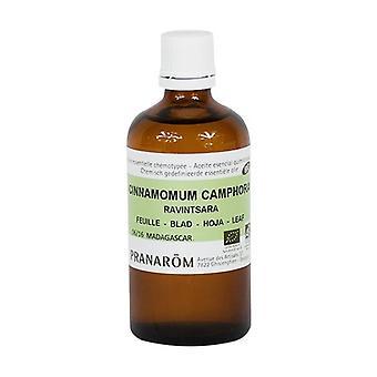 Ravintsara chemotyped essential oil - leaf 100 ml of essential oil