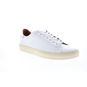 Frye Adult Mens Astor Low Lace Lifestyle Sneakers