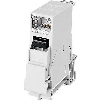 Asennus kiskot liitin RJ45 Socket, sisäänrakennettu määrä nastat: 8P8C J80023A0001 vaaleanharmaa Telegärtner J80023A0001 1 kpl (s)