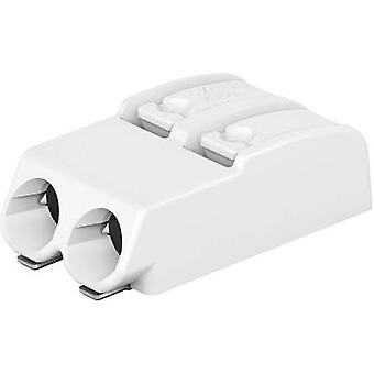 WAGO Openspringende terminal 0,75 mm² aantal pinnen 2 White 1 PC('s)