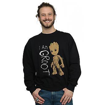 奇迹男人_apos;银河的守护者我是Groot涂鸦汗衫