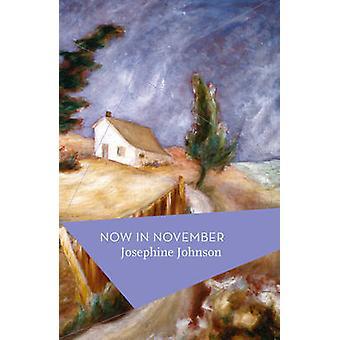 Teraz w listopadzie przez Josephine Johnson - Michael Schmidt - 978178497075