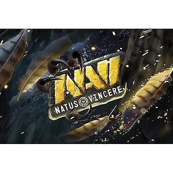 NaVi, Poster