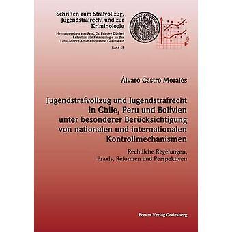 Jugendstrafvollzug und Jugendstrafrecht in Chile Peru und Bolivien unter besonderer Bercksichtigung von nationalen und internationalen Kontrollmechanismen by Morales & lvaro Castro