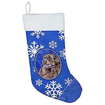 Newfoundland vinter snefnug snefnug ferie Christmas strømpe