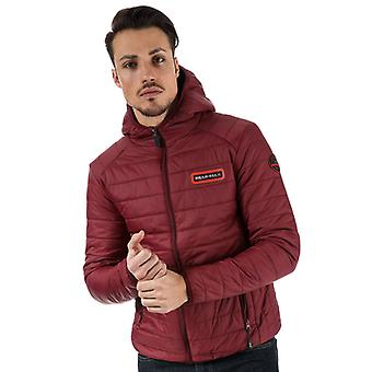 Men's Bear Max Grizzly Hooded Puffer Jacket in Purple