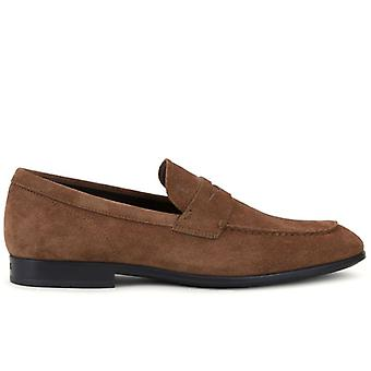 Mäns Moccastine Tod's Brown Suede