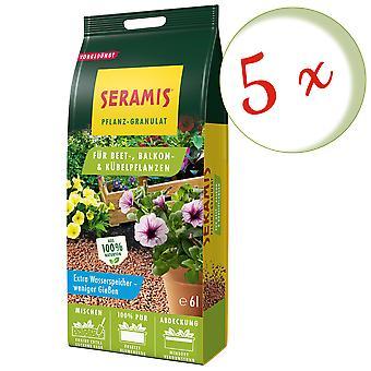 Glesaste: 5 x SERAMIS® växtgranulat för säng, balkong & krukväxter, 6 liter
