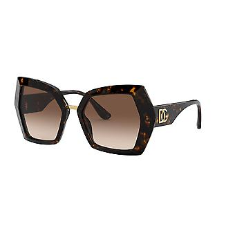 Dolce&Gabbana DG4377 502/13 Havana/Brown Gradient Sunglasses