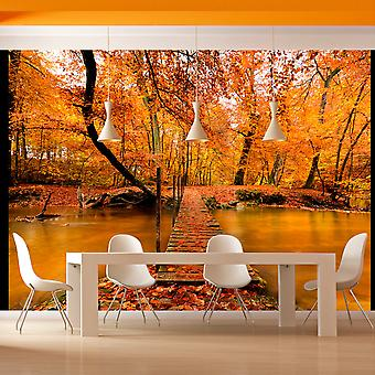 Wallpaper - Autumn bridge
