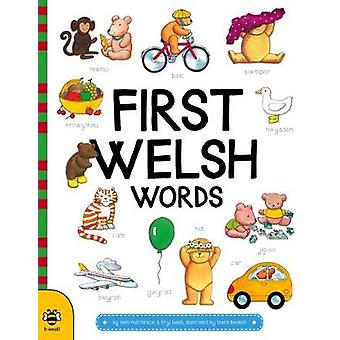 First Welsh Words by Sam Hutchinson - 9781911509189 Book