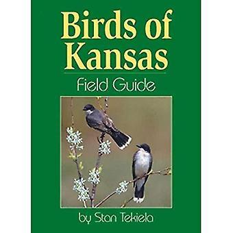 Vogels van Kansas Field Guide (veld gidsen)
