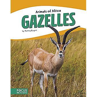 Gazelles by Tammy Gagne - 9781635173277 Book