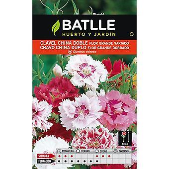 Batlle Double Mixed Giant Carnation (Garden , Gardening , Seeds)