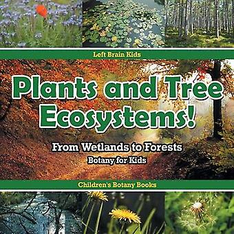 Plants and Tree Ecosystems From Wetlands to Forests  Botany for Kids  Childrens Botany Books by Left Brain Kids